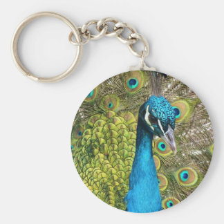 Indian Peacock. Keychain