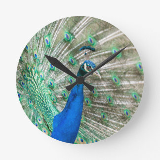 Indian Peacock Round Clock