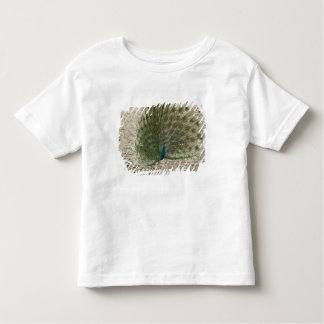 Indian peafowl, peacock, male courtship display toddler t-shirt
