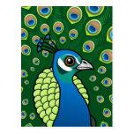 Indian Peafowl Postcard