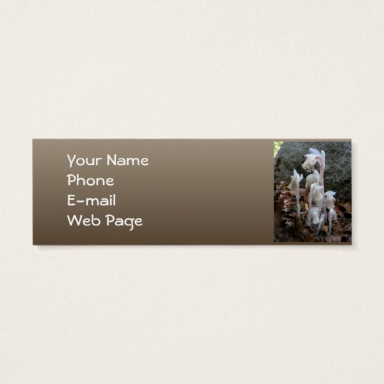 Indian Pipe 27 ~ profile card