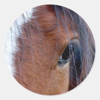 Indian Pony Classic Round Sticker