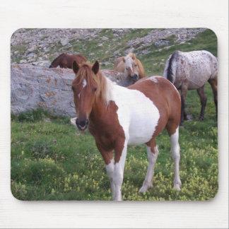 Indian Pony Mousepad