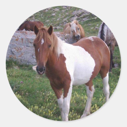 Indian Pony Sticker