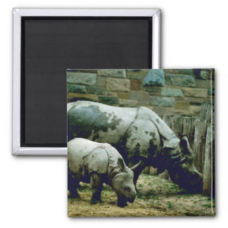 Indian Rhinos Refrigerator Magnet