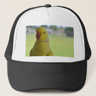 Indian Ringneck in the Shade Trucker Hat