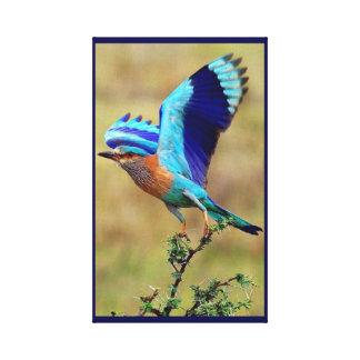 Indian Roller Bird Canvas Print