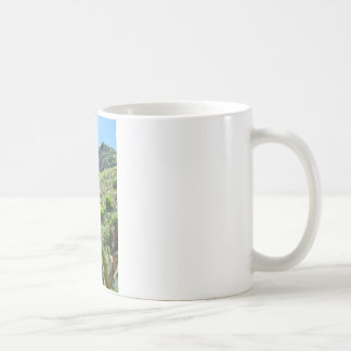 Indian Shot (Canna indica purpurea) Mug