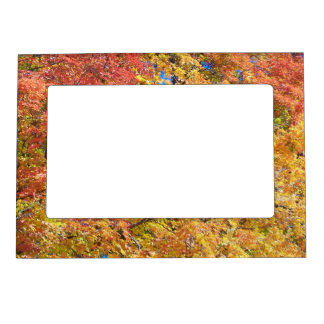 Indian Summer Magnetic Picture Frame