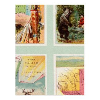 Indian Territory, New Mexico, South Dakota, Texas Postcard
