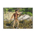 Indian Warrior Covers For iPad Mini