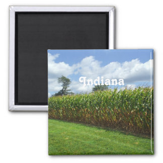 Indiana 2 Inch Square Magnet