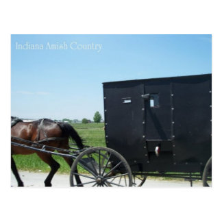 Indiana Amish Country Postcard