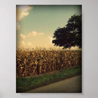 Indiana Corn Print