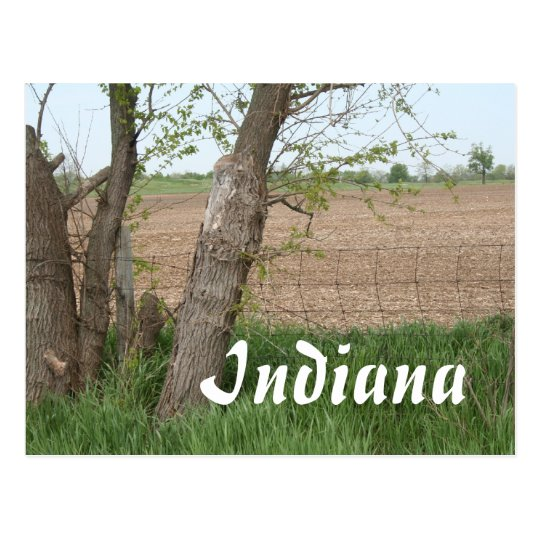 Indiana Countryside Postcard