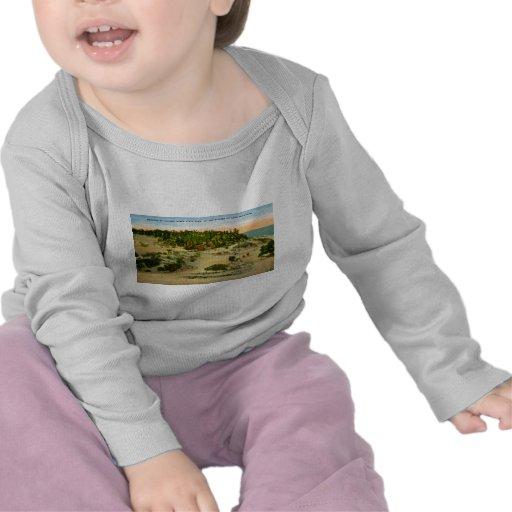 Indiana Dunes State Park Lake Michigan, Indiana T Shirts
