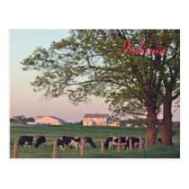 Indiana Farm Postcard