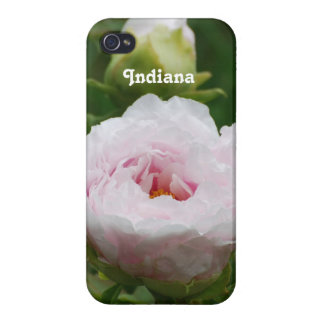 Indiana Peony Covers For iPhone 4