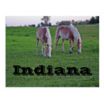 Indiana Post Cards