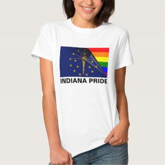 Indiana Pride LGBT Rainbow Flag T-shirt