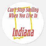 Indiana - sonriendo pegatina redonda