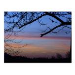 Indiana Sunset Postcard