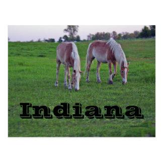 Indiana Tarjetas Postales