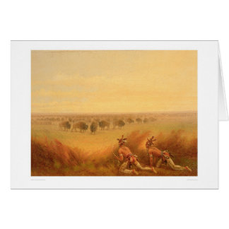 Indians Creeping up on a Herd of Buffalo (1907A) Cards