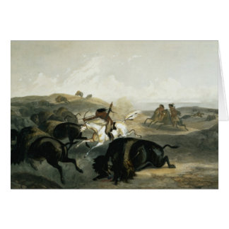 Indians Hunting the Bison, plate 31 from Volume 2 Card