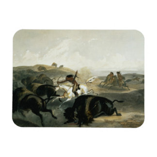 Indians Hunting the Bison plate 31 from Volume 2 Magnets