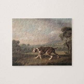 Indicador español de George Stubbs Puzzles Con Fotos