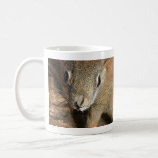 Indignant Squirrel Mug