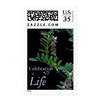 Indigo 2 Celebration of Life Funeral Postage