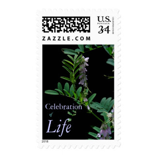 Indigo 2 Celebration of Life Funeral Postage