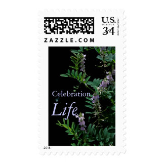 Indigo 3 Celebration of Life Postage