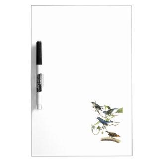 Indigo Bunting by Audubon Dry-Erase Board