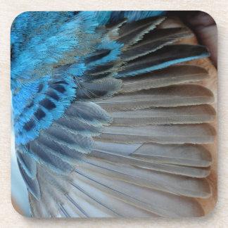 Indigo bunting feathers coaster