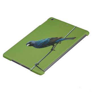 Indigo Bunting iPad Air Case
