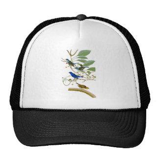 Indigo Bunting John James Audubon Birds of America Trucker Hat