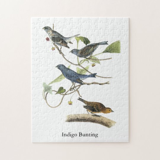 Indigo Bunting, John James Audubon Jigsaw Puzzle