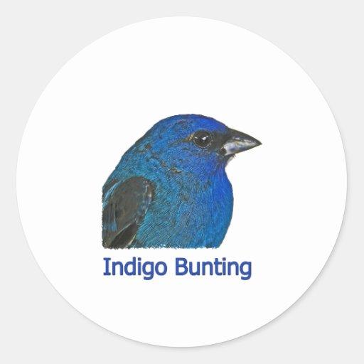 Indigo Bunting Logo Classic Round Sticker