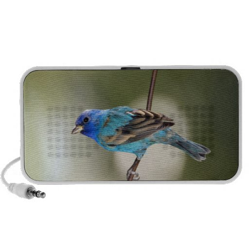 Indigo Bunting perched on bare branch Portable Speakers