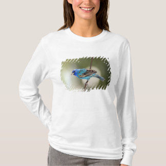 Indigo Bunting perched on bare branch T-Shirt