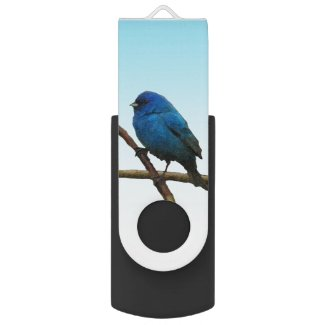 Indigo Bunting Swivel USB 2.0 Flash Drive