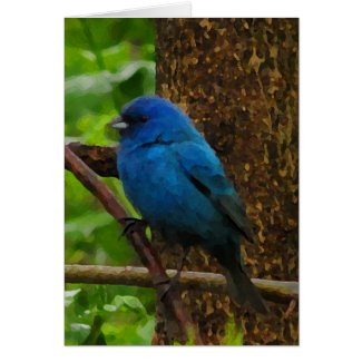 Indigo Bunting Thank You Card