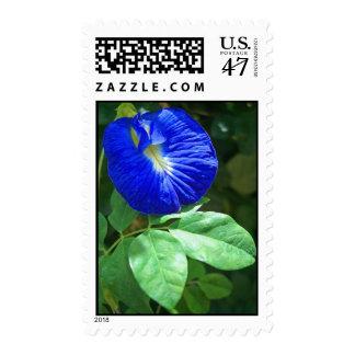 Indigo Flower Postage