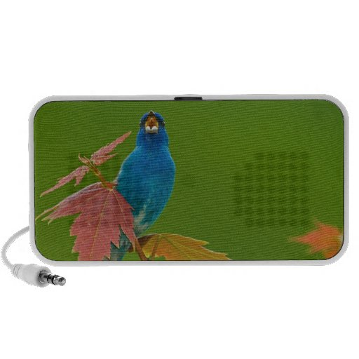 Indigo on Stage Travel Speaker