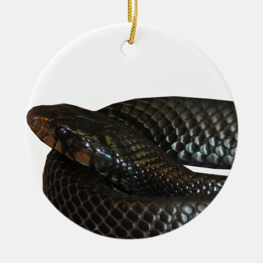 Indigo Snake Ceramic Ornament