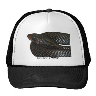 Indigo Snake Trucker Hat