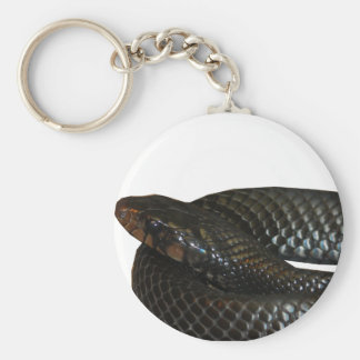 Indigo Snake Key Chain